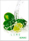 Herlitz Notebook A6 Fresh Fruit Lime