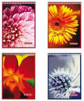 Herlitz Spiral Notepad A7 Assortment Flower 00111732