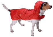Record Raincoat S Red