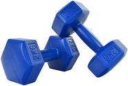 ProFit HEX Dumbbells 2x2kg Blue