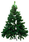 Diana Christmas Tree 120cm Branches 15cm