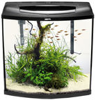 Aquael Aquarium Pearl Set 60 Black