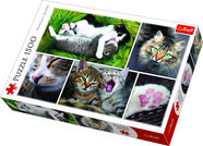 Trefl Puzzle Just Cat Things Collage 1500pcs 26145
