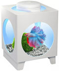 Tetra Betta Projector White