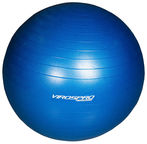 VirosPro Sports Fitness Ball Blue 65cm
