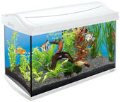 Tetra AquaArt Aquarium LED 60l White