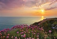 Komar Photo Wallpapper Code-A 8-901 Lands End 368x254cm
