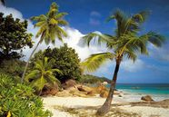 Komar Photo Wallpapper Praslin 8-885 368x254cm