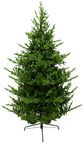 Christmas Touch Christmas Tree 180cm HJT1903