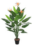 Home4you Bird Of Paradise Artificial Plant H150cm Green